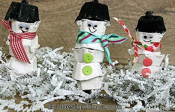 Craft With Egg Carton: Amazing Ideas And Diys!