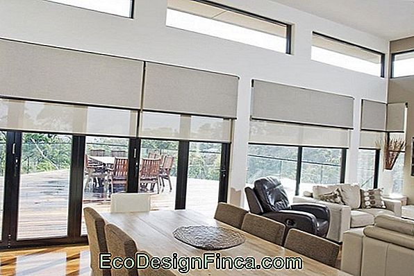 Curtain / Roller Blind: What It Is, Models, Price And Where To Use!