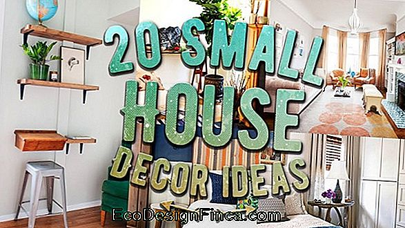Decoration Of Simple Houses: Cheap And Creative Tips!