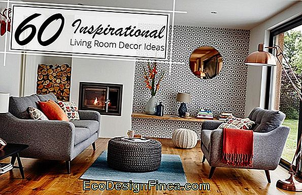 Decorative Pictures: 60 Current Inspirations And Perfect For Decoration