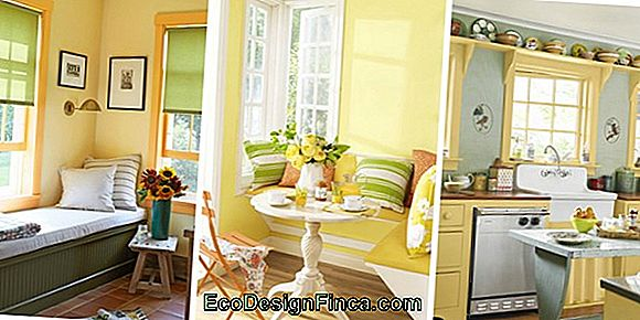 Yellow Wall: How To Decorate And Where To Use!