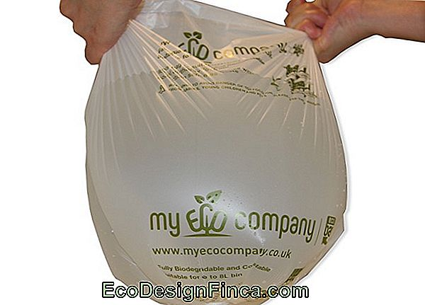 Ecobags - Disposable Or Biodegradable Bag!