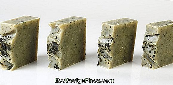 Properties And Uses Of Natural Ingredients For Soaps
