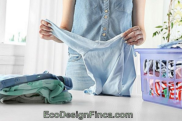 Clothing Softeners