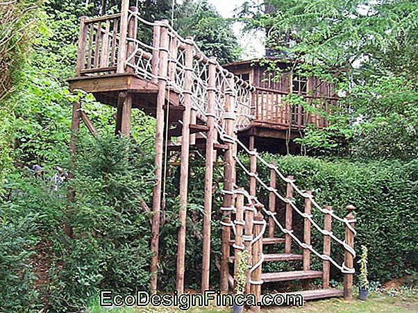 Fun Garden: Treehouse