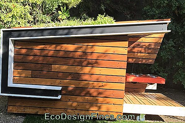 Green Roof For Dog House