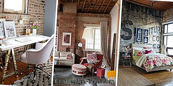 Brick Wall: Ideas To Decorate With Brick