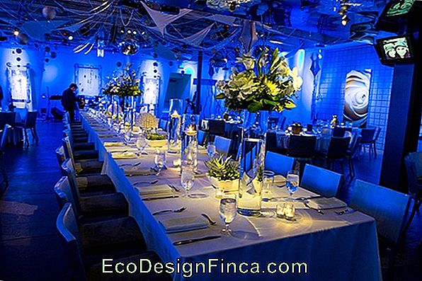 Wedding Decoration In Blue Color