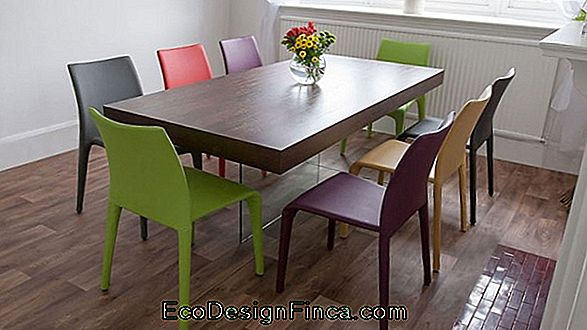 Dining Rooms With Colored Chairs