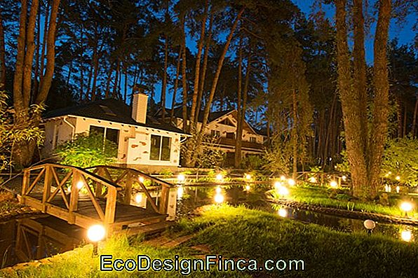 Garden Lighting: Tips To Make And 60 Inspirations