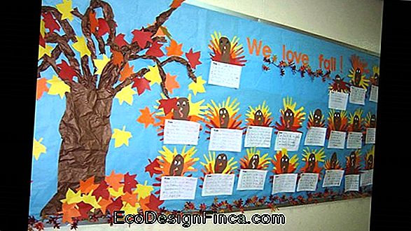 Classroom Decoration: How To Make And Ideas To Decorate