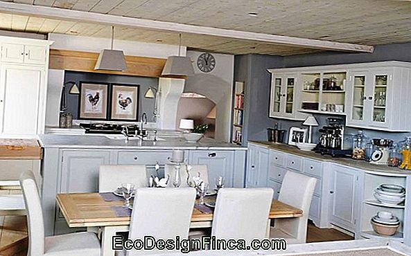 Decorated And Planned Small Kitchens