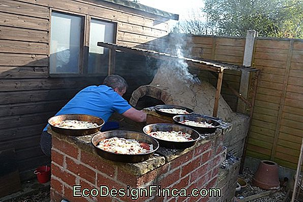 Pizza Oven For Pizzas: How To Build Your Own