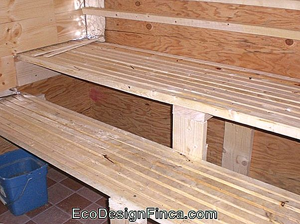 Sauna A Vapor: How To Build, Important Tips!