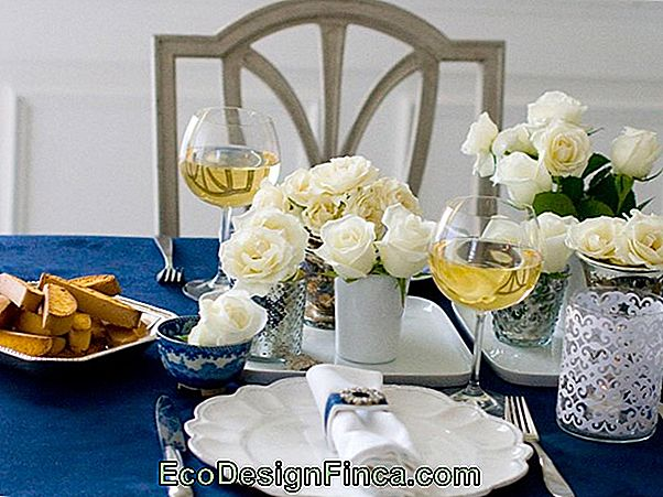 Informal Dining: How To Organize With Elegance