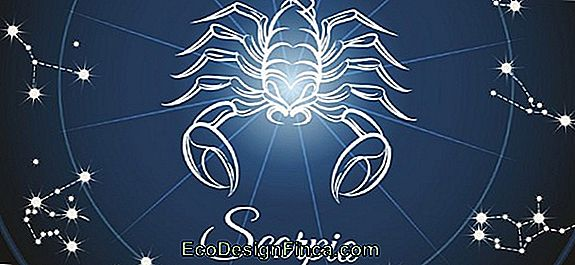 Horoscope 2019 Signe Du Scorpion