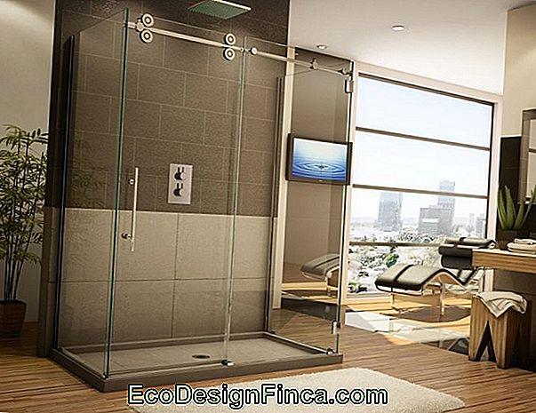 Glass Box For Bathroom: Avantages, Modèles, Prix Et Plus De 40 Photos!