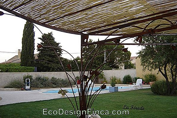 Pergolate / Pergola: 70 Superbes Designs Et Photos!