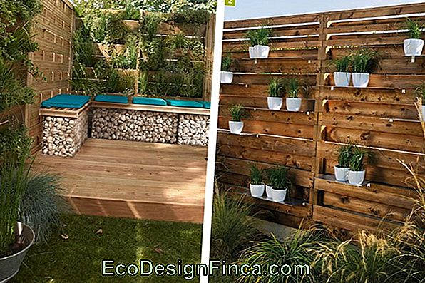 Comment Faire Un Jardin Vertical?