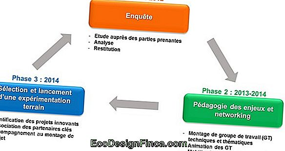 Phases Du Travail - Structure