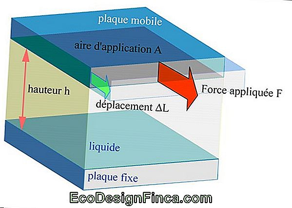 Woods: Propriétés, Force Et Applications!