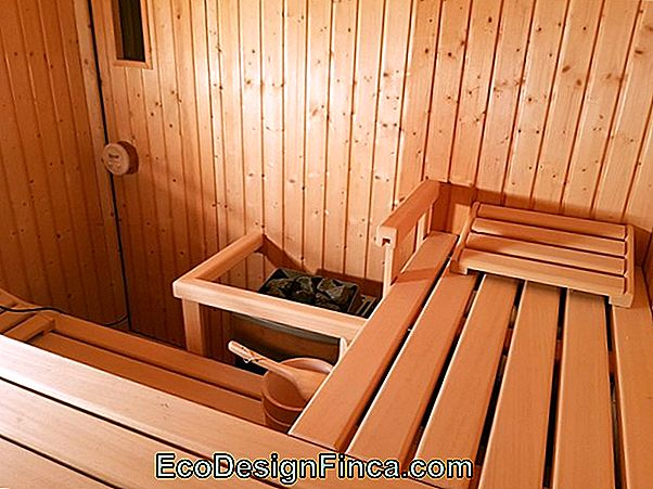 Sauna Humide, Suggestion De Températures!