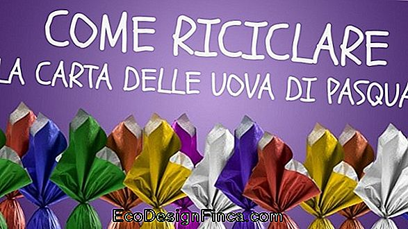 Come Riciclare La Carta