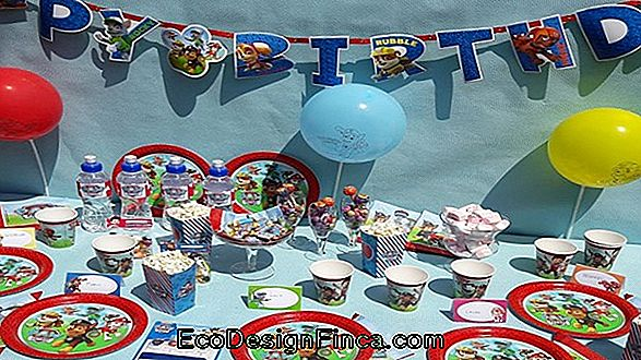 Canine Patrol Party: 60 Idee Per Decorazioni A Tema
