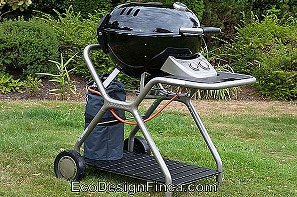 Come Pulire Barbecue A Gas E Elettrici