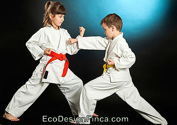 Ideāls Martial Art For Child
