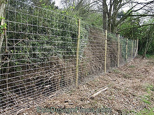 Horticultural Fences Of Contour Cords