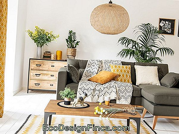 Decoratietrends In 2019