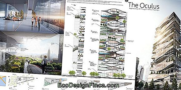 Sustainable House: Planning The Work
