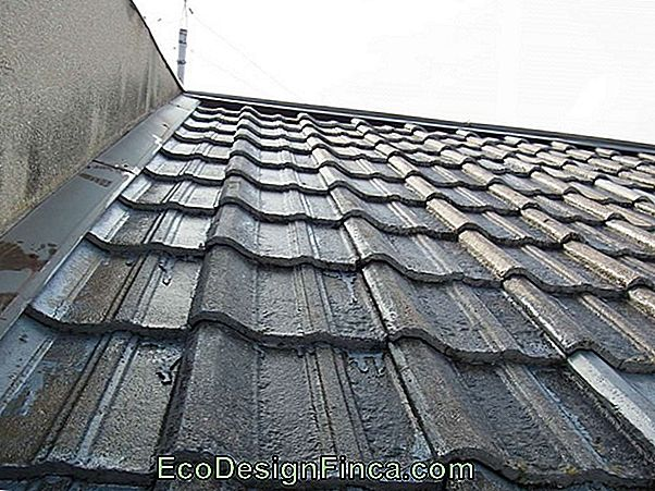 Reform Of The Roof I - Twijfels En Tips!