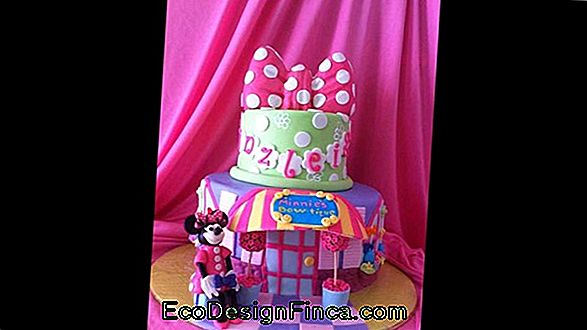 Minnie'S Party Decoration