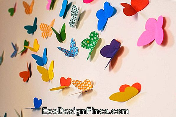 Wall Sticker Fabric: Cum De A Decora Casa