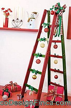 tree-of-natal-de-ladder